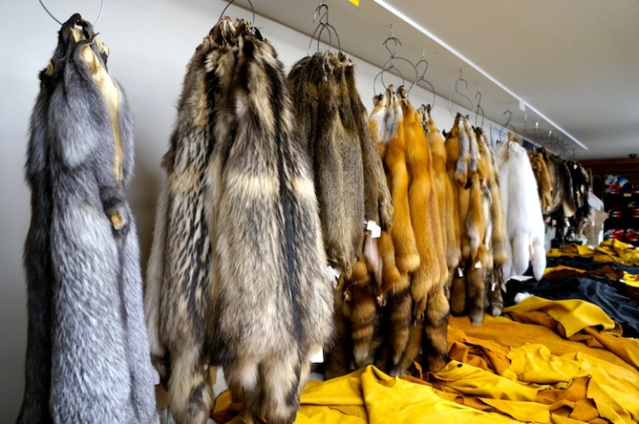animal furs at iroqrafts