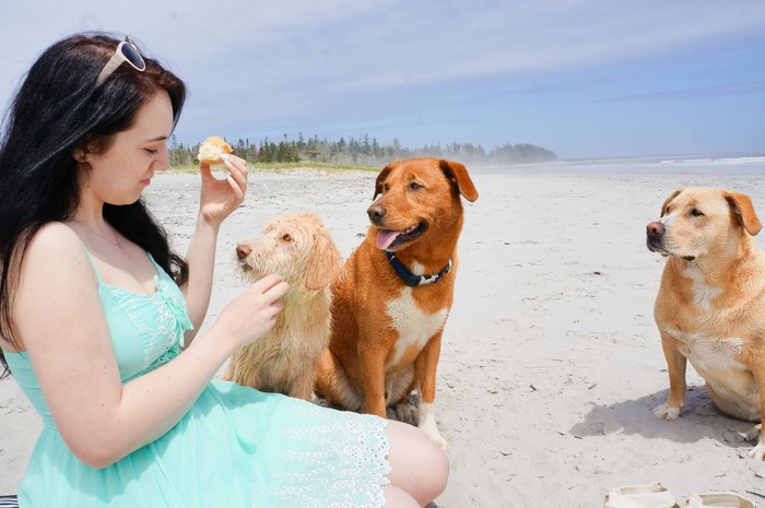 sage_teal_guess_dress_puppies_beach