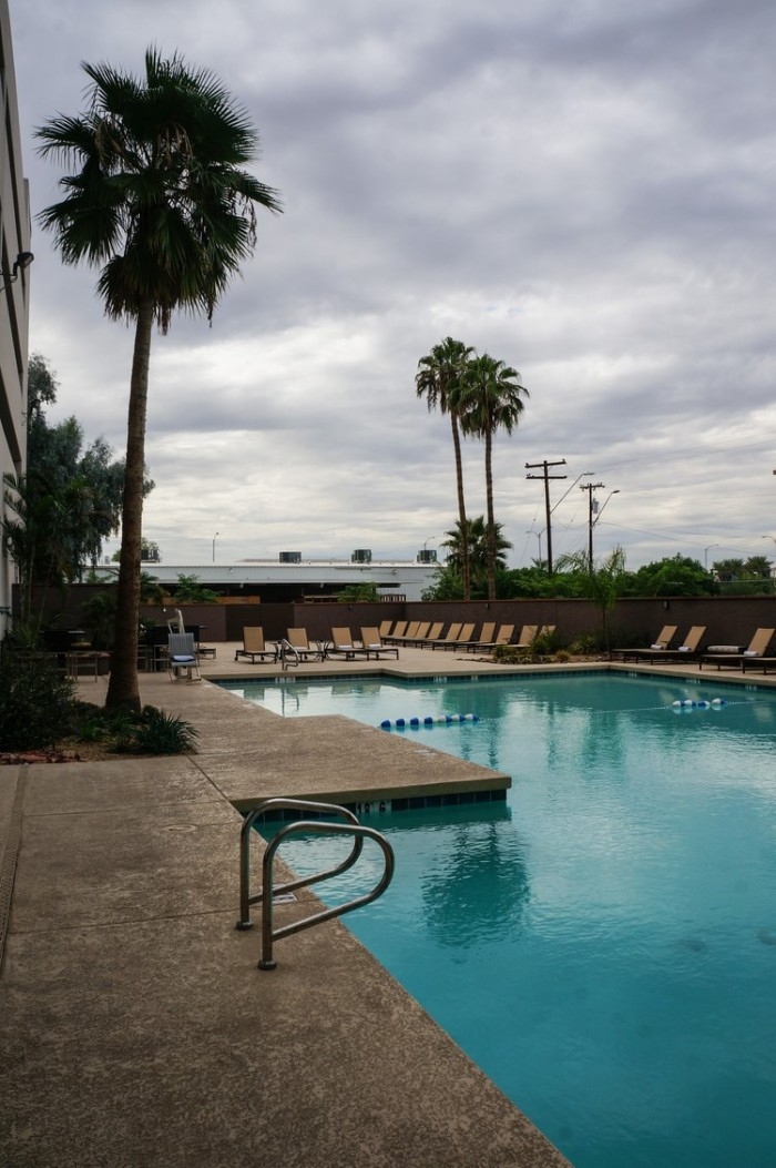 crowne_plaza_phoenix_airport_hotel_swimming_pool_palm_trees