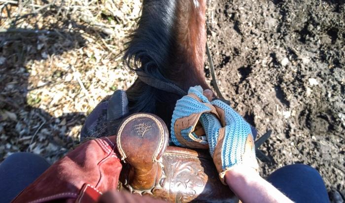 horseback_riding_wildwood_manor_ranch_april_2015_10