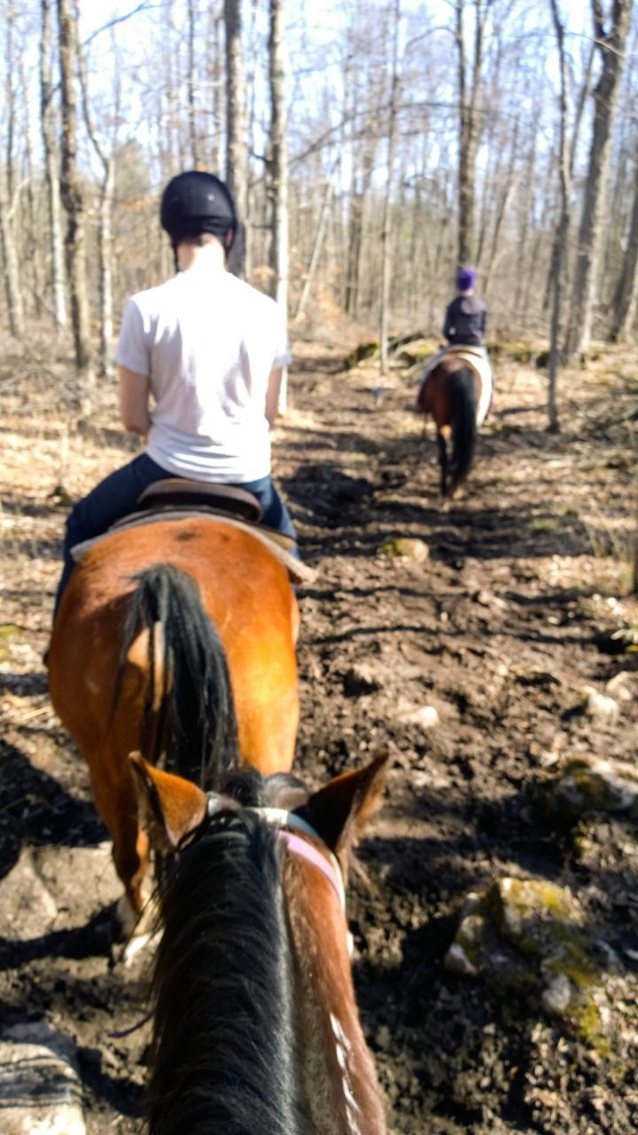 horseback_riding_wildwood_manor_ranch_april_2015_9