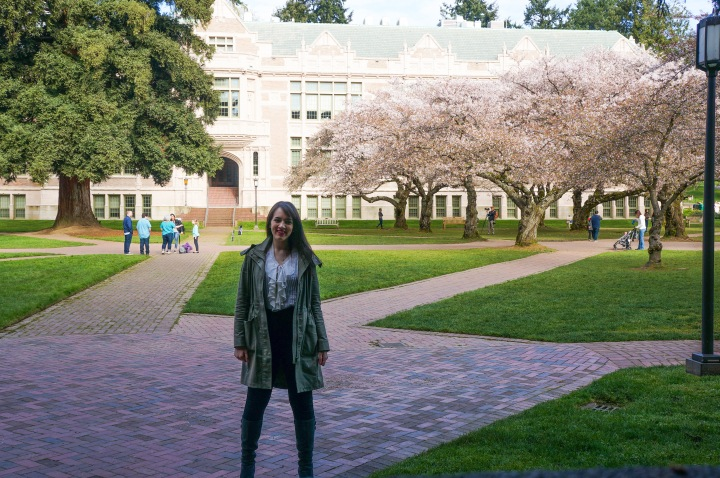 cherry_blossoms_spring_university_washington_trendy_techie_7