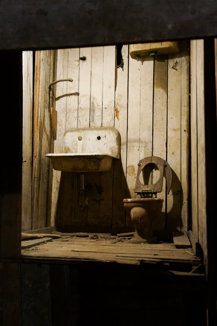 seattle-underground-walking-tour-travel-trendy-techie-9-crapper